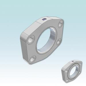 PAFSF-G SAE Straight 4 bolt flange flat with BSPP thread